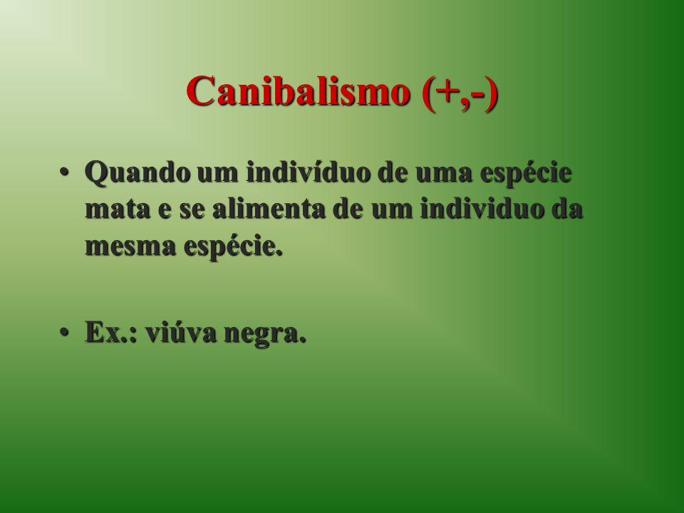 Canibalismo (+,-) Quando um indivíduo de uma espécie mata e se alimenta de um individuo da mesma espécie.Quando um indivíduo de uma espécie mata e se alimenta de um individuo da mesma espécie.