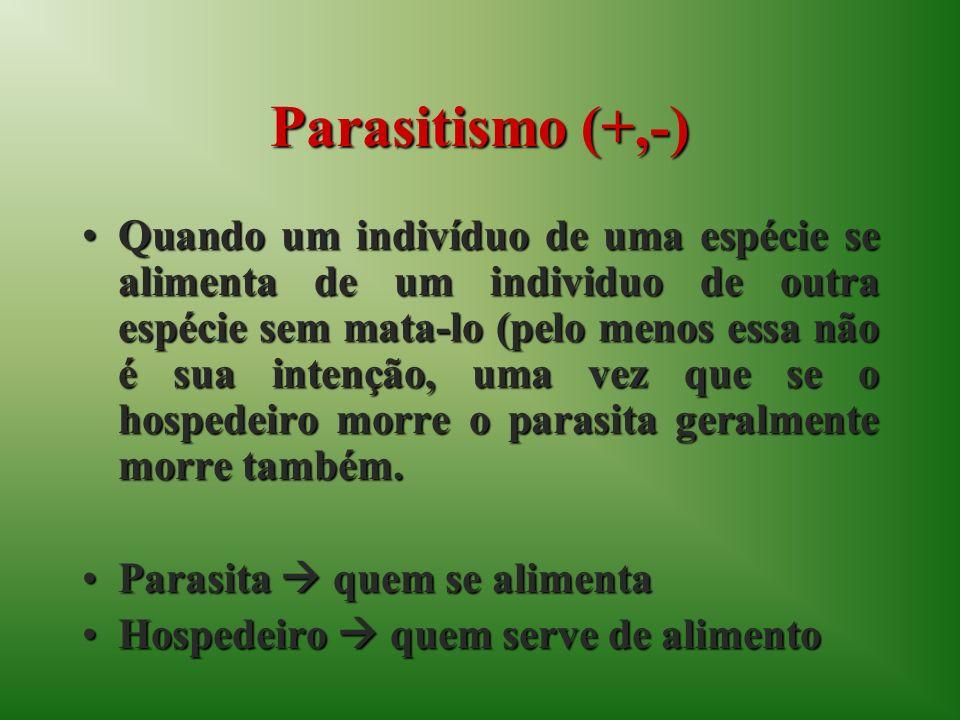 Parasitismo (+,-) Quando um indivíduo de uma espécie se alimenta de um individuo de outra espécie sem mata-lo (pelo menos essa não é sua intenção, uma vez que se o hospedeiro morre o parasita geralmente morre também.Quando um indivíduo de uma espécie se alimenta de um individuo de outra espécie sem mata-lo (pelo menos essa não é sua intenção, uma vez que se o hospedeiro morre o parasita geralmente morre também.