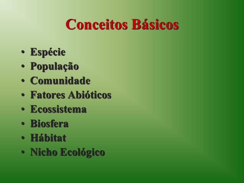 Conceitos Básicos EspécieEspécie PopulaçãoPopulação ComunidadeComunidade Fatores AbióticosFatores Abióticos EcossistemaEcossistema BiosferaBiosfera HábitatHábitat Nicho EcológicoNicho Ecológico