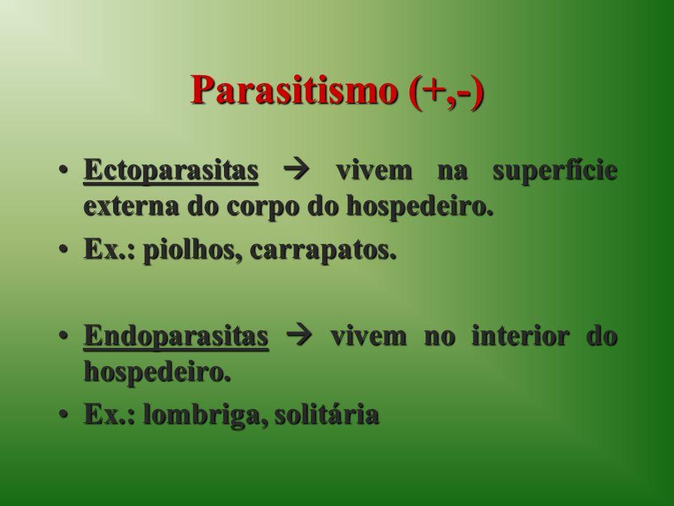 Parasitismo (+,-) Ectoparasitas vivem na superfície externa do corpo do hospedeiro.Ectoparasitas vivem na superfície externa do corpo do hospedeiro.