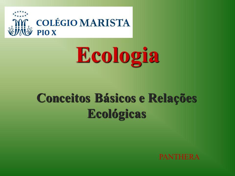 Ecologia Conceitos Básicos e Relações Ecológicas PANTHERA