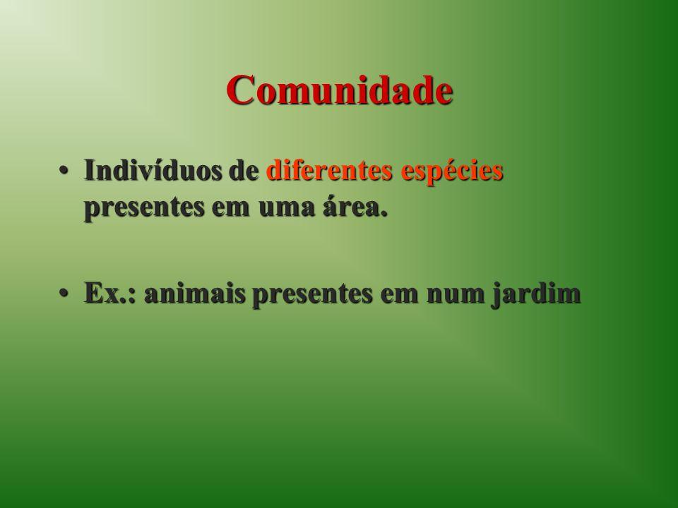Comunidade Indivíduos de diferentes espécies presentes em uma área.Indivíduos de diferentes espécies presentes em uma área.