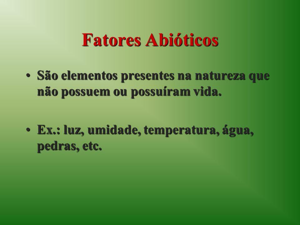 Fatores Abióticos São elementos presentes na natureza que não possuem ou possuíram vida.São elementos presentes na natureza que não possuem ou possuír