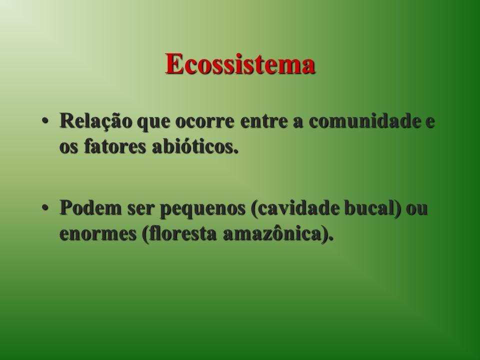 Ecossistema Relação que ocorre entre a comunidade e os fatores abióticos.Relação que ocorre entre a comunidade e os fatores abióticos. Podem ser peque