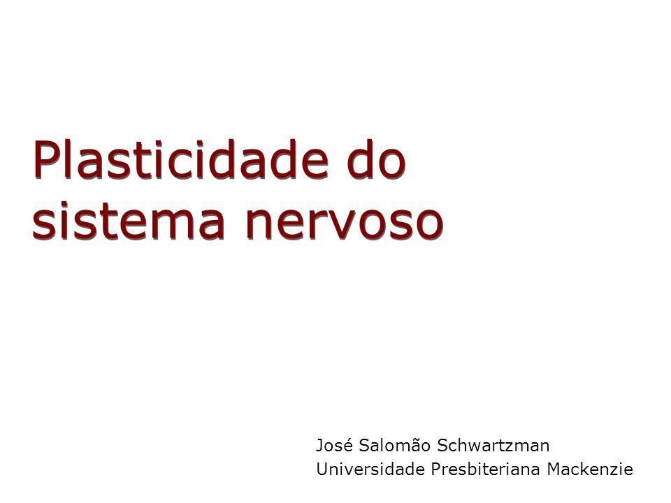 Plasticidade do sistema nervoso José Salomão Schwartzman Universidade Presbiteriana Mackenzie