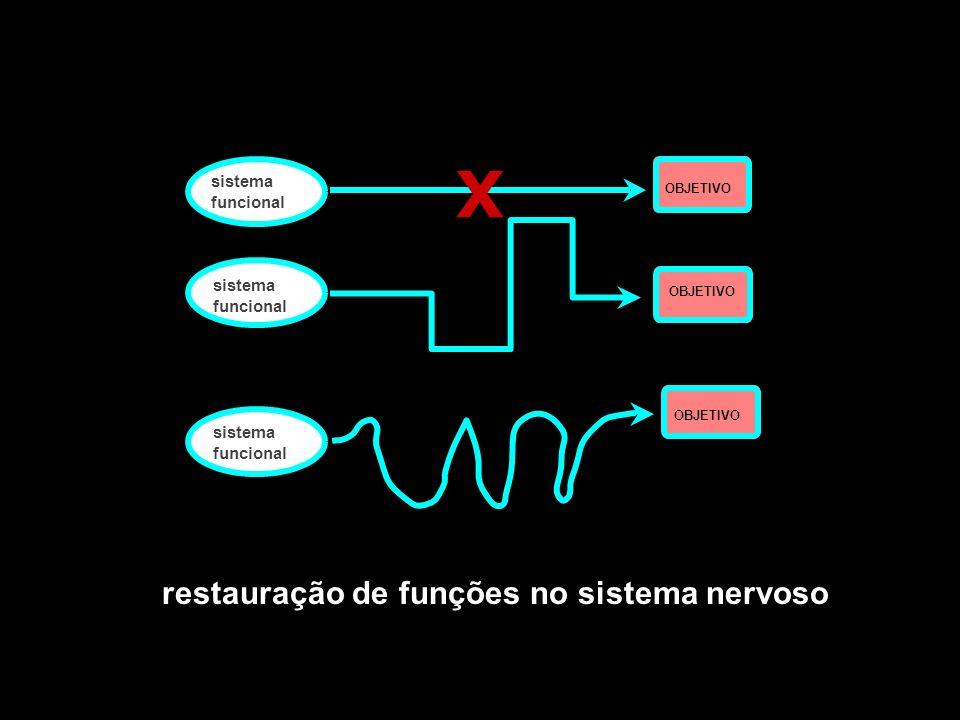 OBJETIVO sistema funcional sistema OBJETIVO funcional OBJETIVO sistema funcional OBJETIVO sistema funcional OBJETIVO X