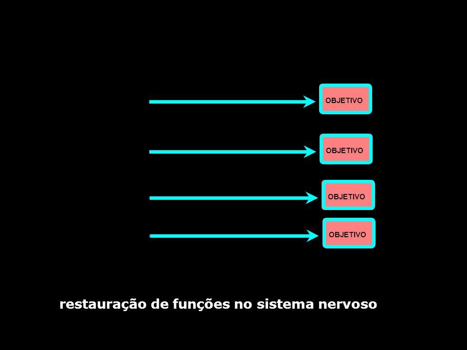 restauração de funções no sistema nervoso sistema funcional OBJETIVO sistema funcional sistema funcional sistema funcional