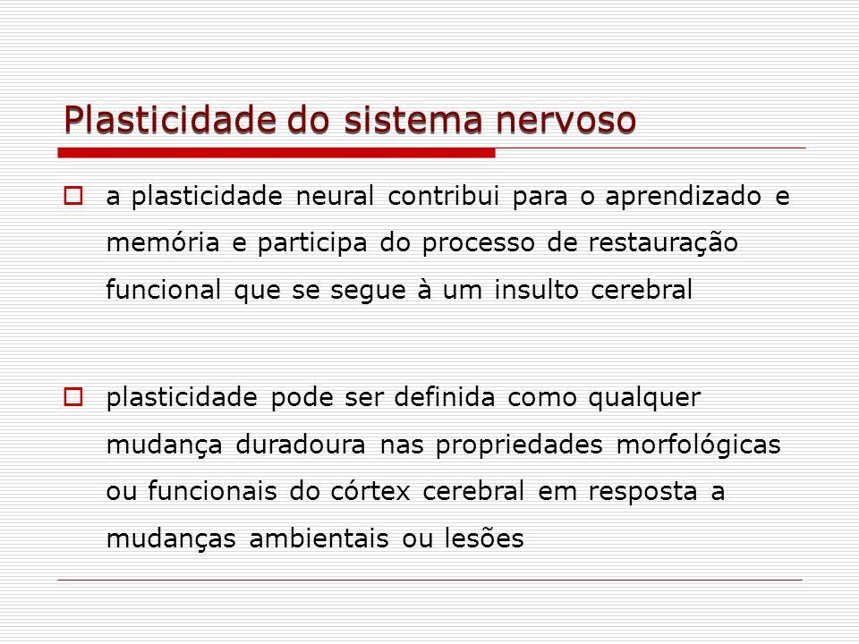 Plasticidade do sistema nervoso a plasticidade neural contribui para o aprendizado e memória e participa do processo de restauração funcional que se s