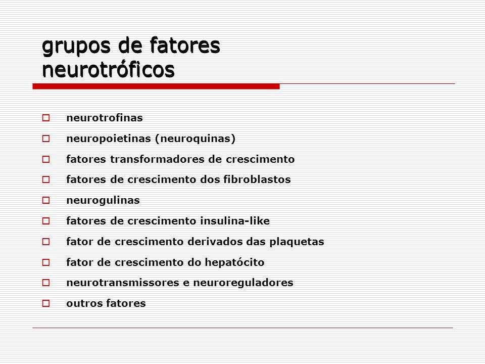 grupos de fatores neurotróficos neurotrofinas neuropoietinas (neuroquinas) fatores transformadores de crescimento fatores de crescimento dos fibroblas