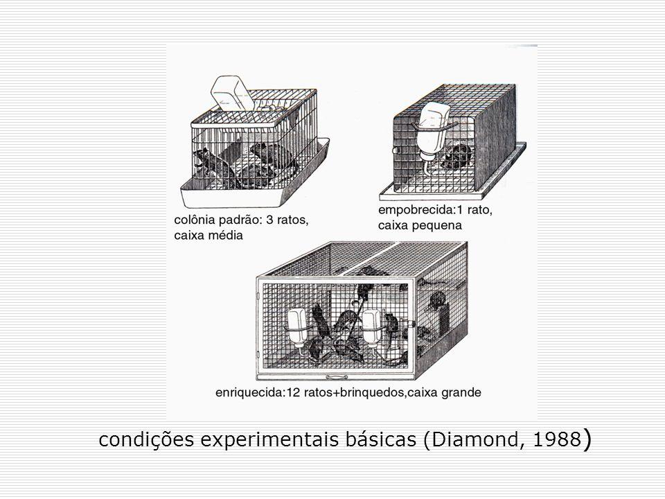 condições experimentais básicas (Diamond, 1988 )