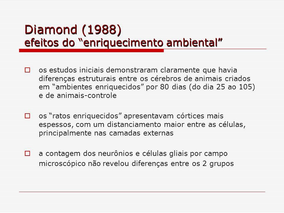 Diamond (1988) efeitos do enriquecimento ambiental os estudos iniciais demonstraram claramente que havia diferenças estruturais entre os cérebros de a