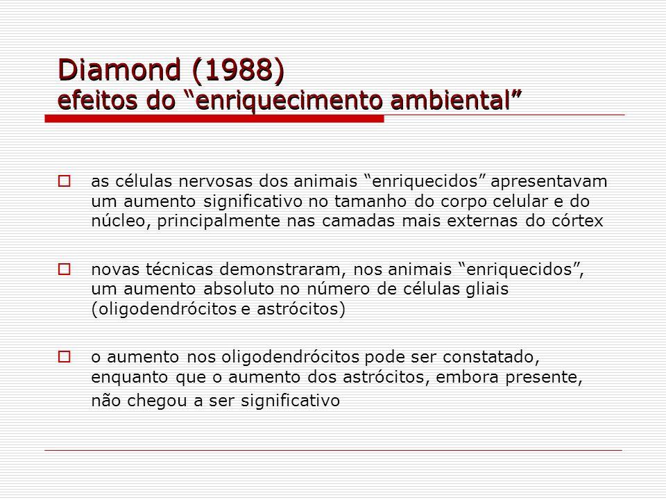 Diamond (1988) efeitos do enriquecimento ambiental as células nervosas dos animais enriquecidos apresentavam um aumento significativo no tamanho do co
