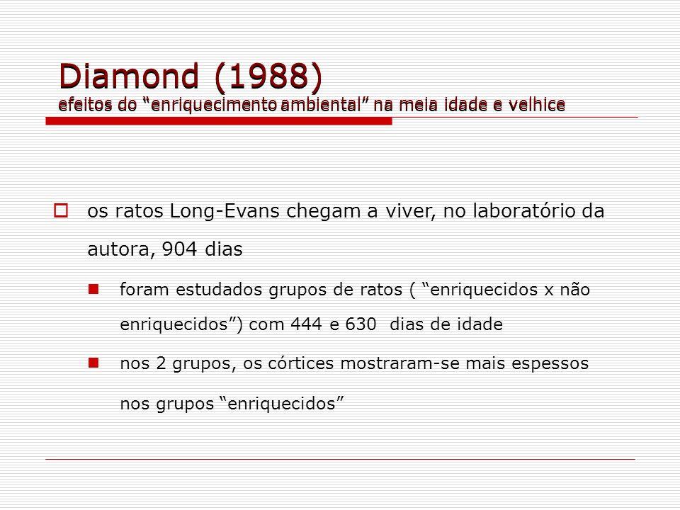 Diamond (1988) efeitos do enriquecimento ambiental na meia idade e velhice os ratos Long-Evans chegam a viver, no laboratório da autora, 904 dias fora