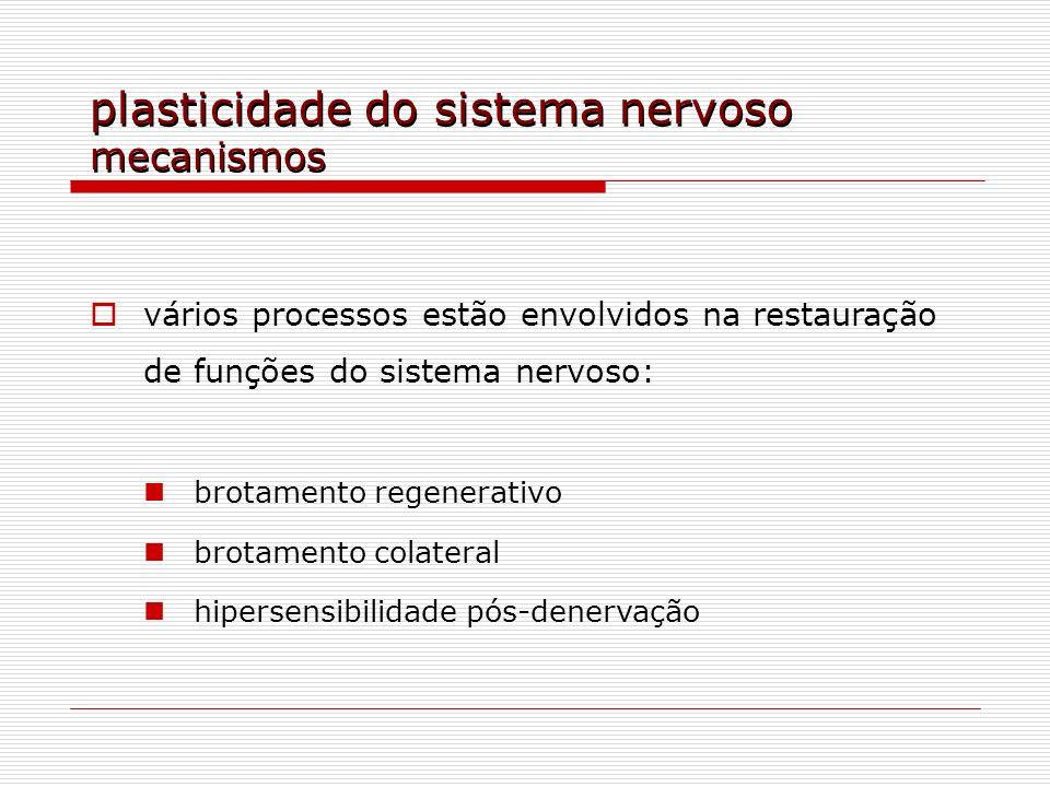 plasticidade do sistema nervoso mecanismos vários processos estão envolvidos na restauração de funções do sistema nervoso: brotamento regenerativo bro
