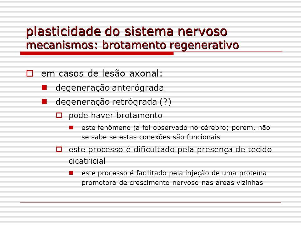 plasticidade do sistema nervoso mecanismos: brotamento regenerativo em casos de lesão axonal: degeneração anterógrada degeneração retrógrada (?) pode