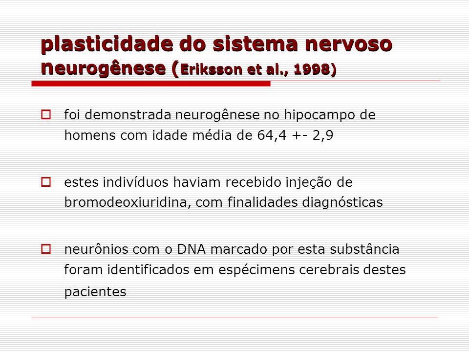 plasticidade do sistema nervoso n eurogênese ( Eriksson et al., 1998) foi demonstrada neurogênese no hipocampo de homens com idade média de 64,4 +- 2,