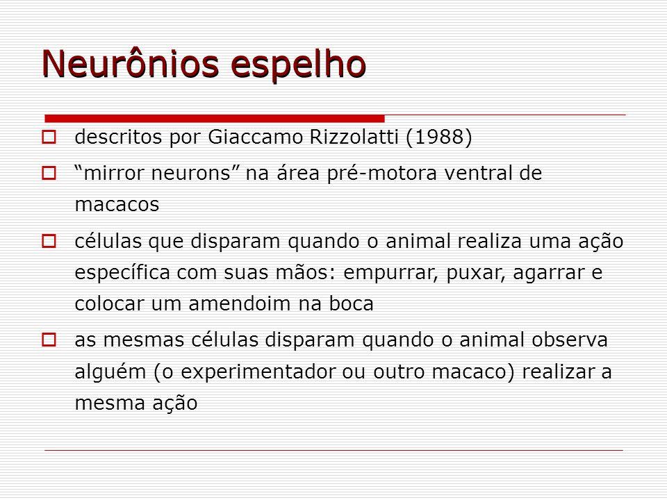 Neurônios espelho descritos por Giaccamo Rizzolatti (1988) mirror neurons na área pré-motora ventral de macacos células que disparam quando o animal r