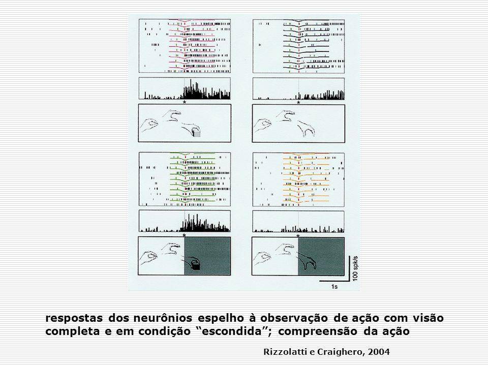 respostas dos neurônios espelho à observação de ação com visão completa e em condição escondida; compreensão da ação Rizzolatti e Craighero, 2004