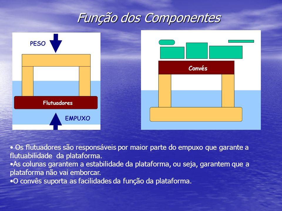 Função dos Componentes Os flutuadores são responsáveis por maior parte do empuxo que garante a flutuabilidade da plataforma. As colunas garantem a est