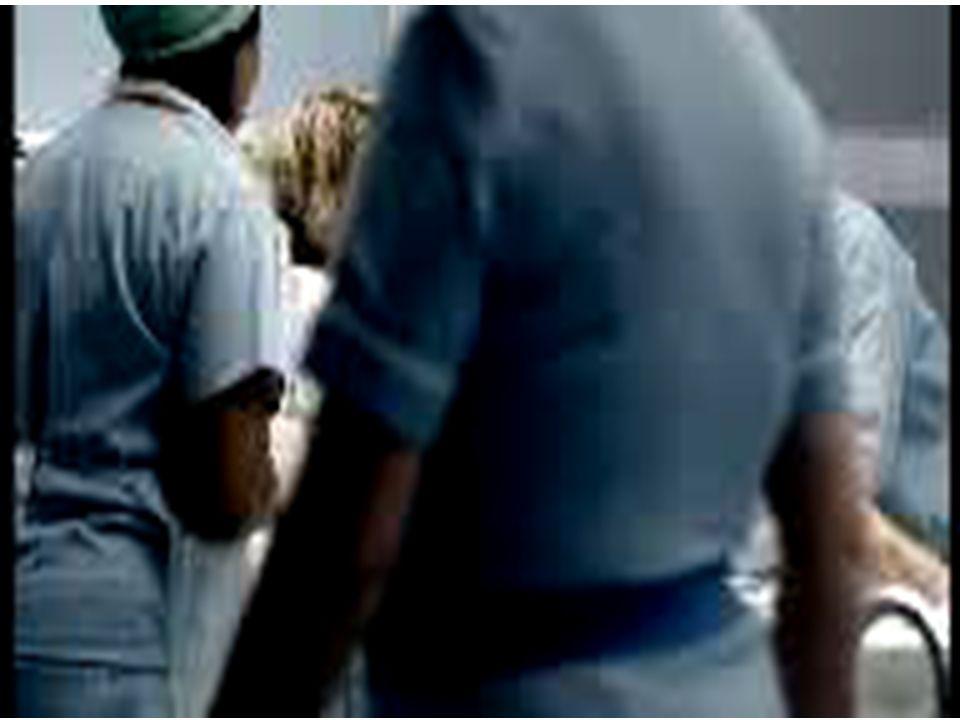 www.domicianosiqueira.com.br