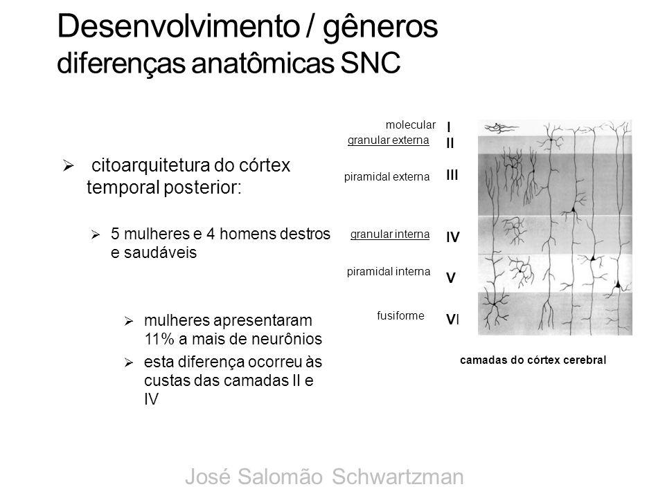 Desenvolvimento / gêneros diferenças anatômicas SNC citoarquitetura do córtex temporal posterior: 5 mulheres e 4 homens destros e saudáveis mulheres a