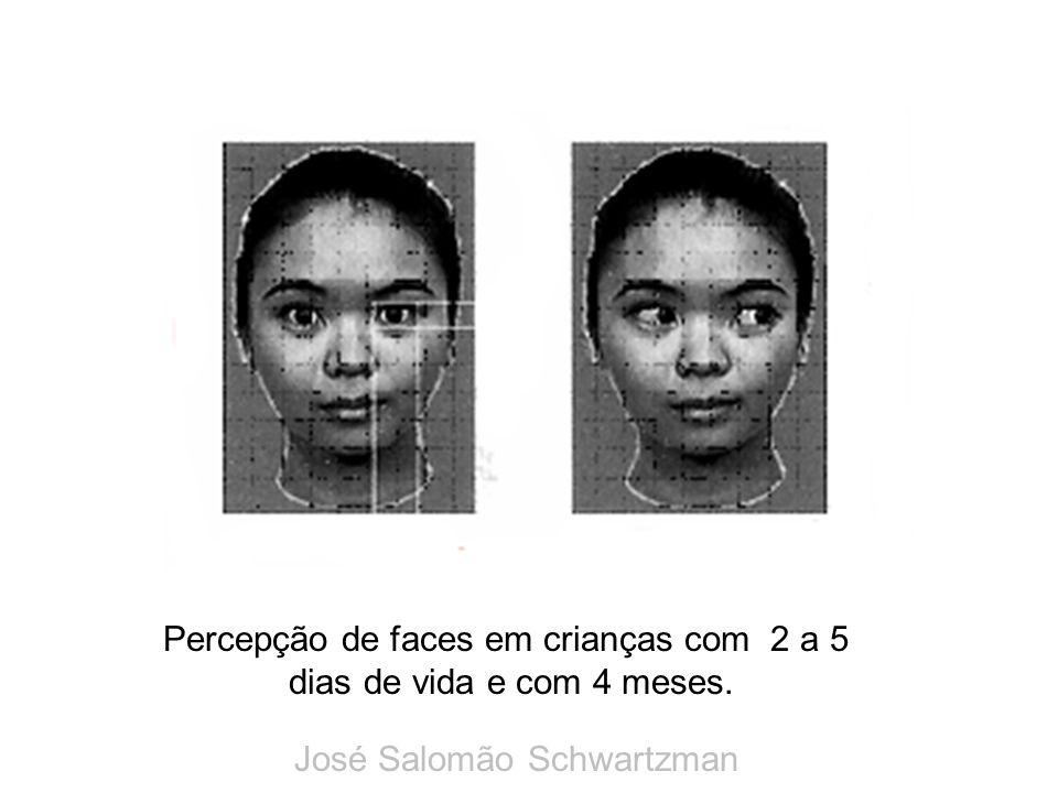 Percepção de faces em crianças com 2 a 5 dias de vida e com 4 meses. José Salomão Schwartzman