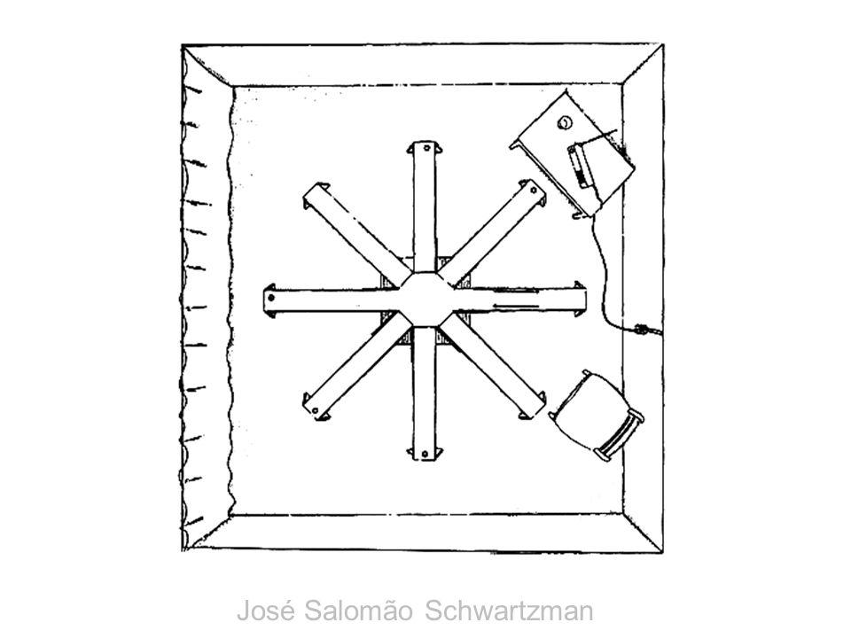 labirinto com braços radiais José Salomão Schwartzman