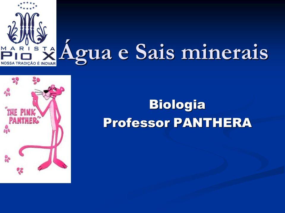 Água e Sais minerais Biologia Professor PANTHERA