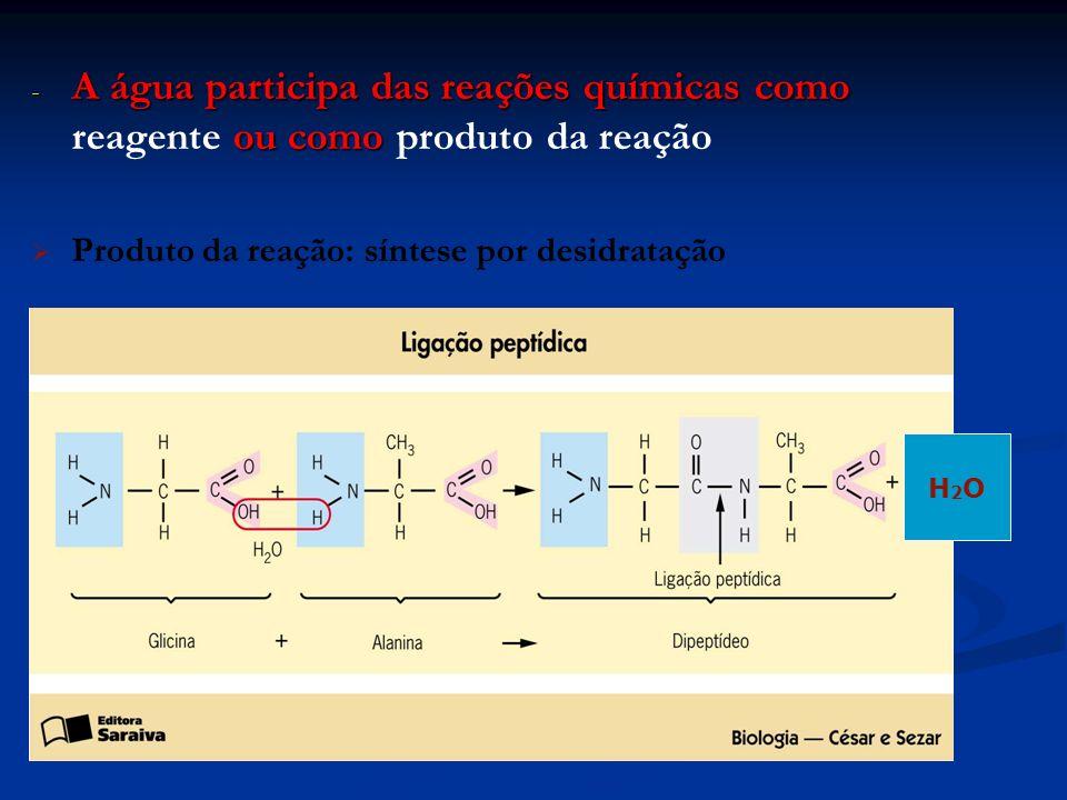 - A água participa das reações químicas como ou como - A água participa das reações químicas como reagente ou como produto da reação Produto da reação