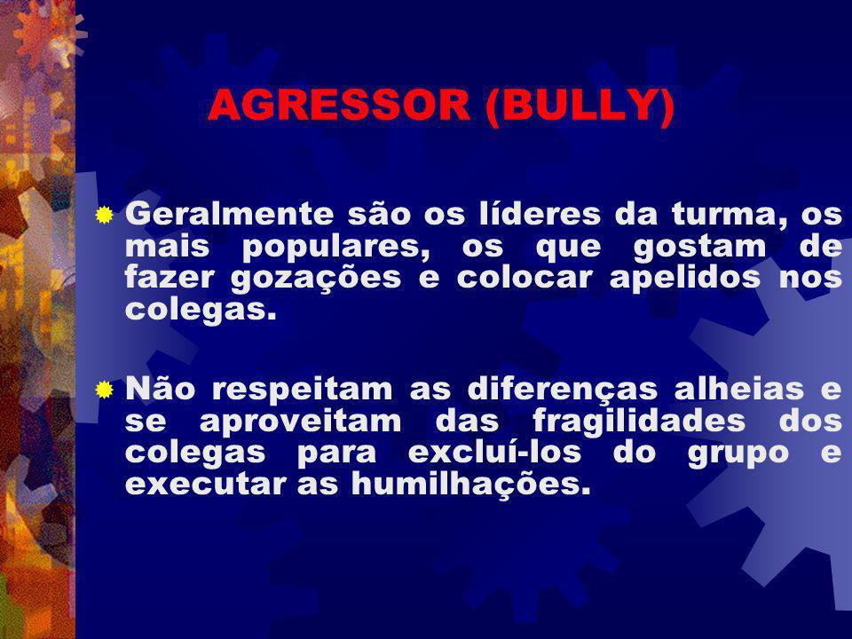 AGRESSOR (BULLY) Geralmente são os líderes da turma, os mais populares, os que gostam de fazer gozações e colocar apelidos nos colegas. Não respeitam