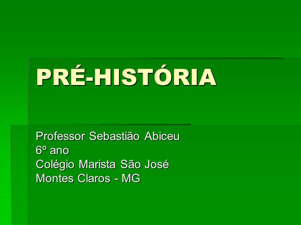 PRÉ-HISTÓRIA Professor Sebastião Abiceu 6º ano Colégio Marista São José Montes Claros - MG