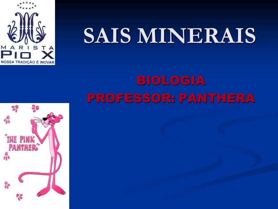 SAIS MINERAIS BIOLOGIA PROFESSOR: PANTHERA