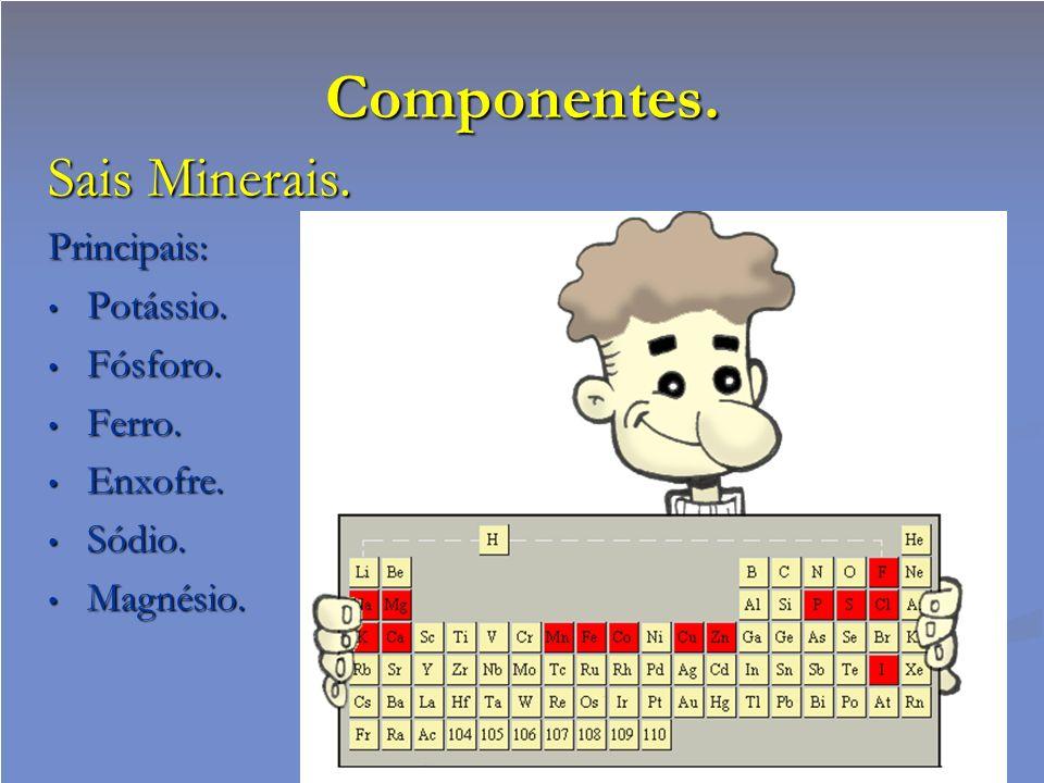 Componentes. Sais Minerais. Principais: Potássio. Potássio. Fósforo. Fósforo. Ferro. Ferro. Enxofre. Enxofre. Sódio. Sódio. Magnésio. Magnésio.