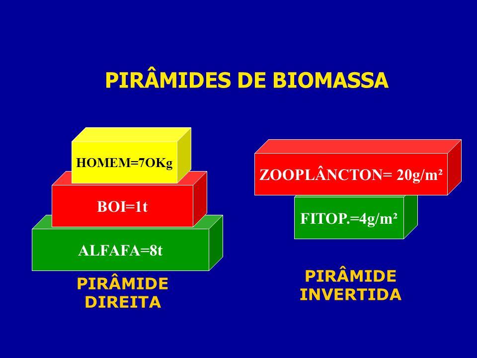 PIRÂMIDES DE BIOMASSA ALFAFA=8t BOI=1t HOMEM=7OKg PIRÂMIDE DIREITA FITOP.=4g/m² ZOOPLÂNCTON= 20g/m² PIRÂMIDE INVERTIDA