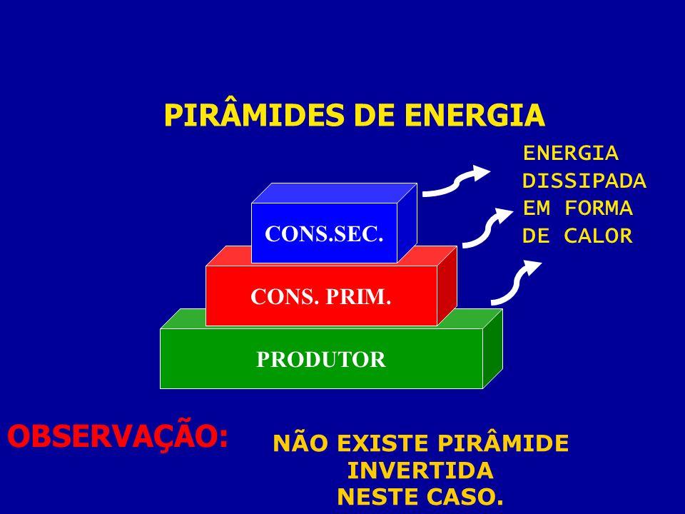 PIRÂMIDES DE ENERGIA PRODUTOR CONS. PRIM. CONS.SEC. ENERGIA DISSIPADA EM FORMA DE CALOR OBSERVAÇÃO: NÃO EXISTE PIRÂMIDE INVERTIDA NESTE CASO.