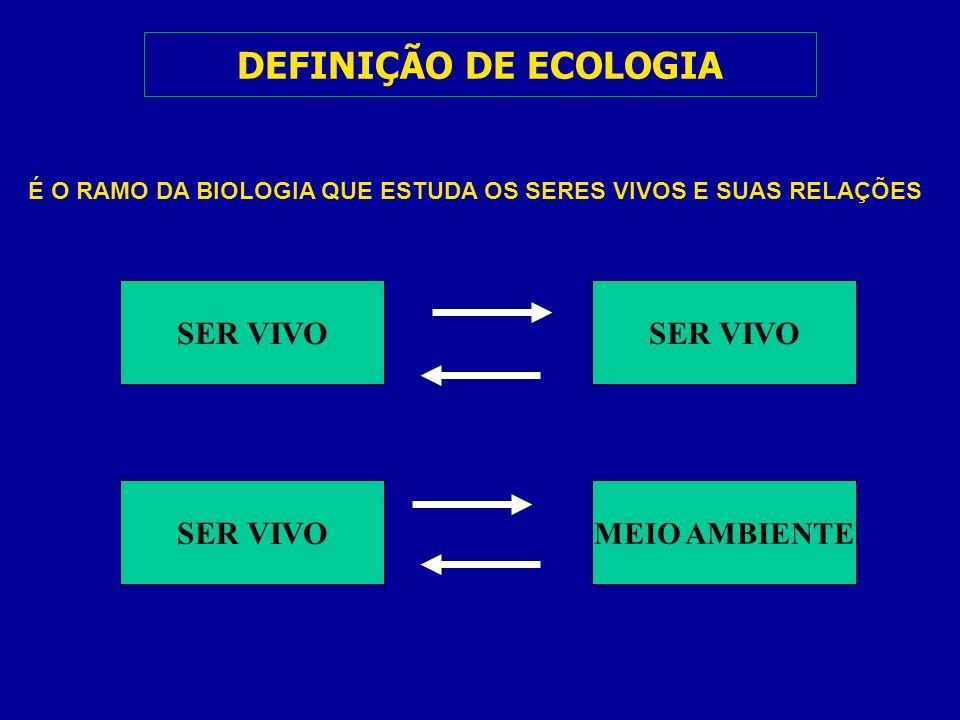 DEFINIÇÃO DE ECOLOGIA SER VIVO MEIO AMBIENTE É O RAMO DA BIOLOGIA QUE ESTUDA OS SERES VIVOS E SUAS RELAÇÕES