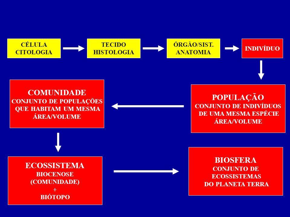 NÍVEIS DE ORGANIZAÇÃO CÉLULA CITOLOGIA TECIDO HISTOLOGIA INDIVÍDUO ÓRGÃO/SIST. ANATOMIA POPULAÇÃO CONJUNTO DE INDIVÍDUOS DE UMA MESMA ESPÉCIE ÁREA/VOL