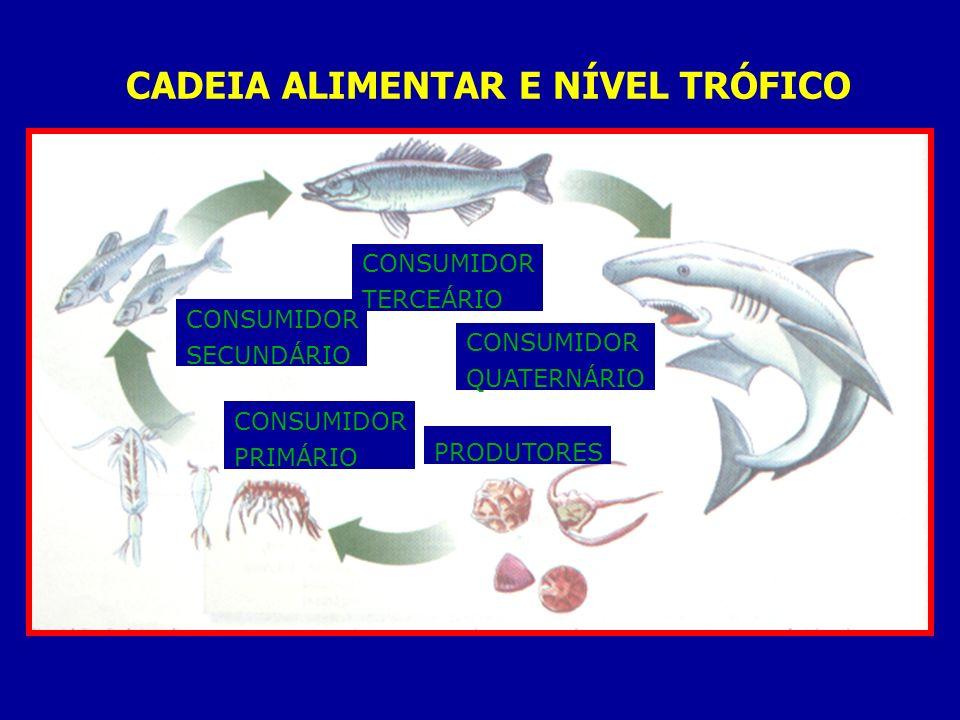 CADEIA ALIMENTAR E NÍVEL TRÓFICO PRODUTORES CONSUMIDOR PRIMÁRIO CONSUMIDOR SECUNDÁRIO CONSUMIDOR TERCEÁRIO CONSUMIDOR QUATERNÁRIO