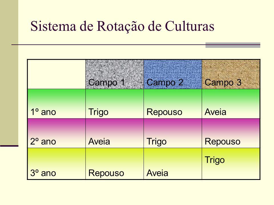 Sistema de Rotação de Culturas Campo 1Campo 2Campo 3 1º anoTrigoRepousoAveia 2º anoAveiaTrigoRepouso 3º anoRepousoAveia Trigo