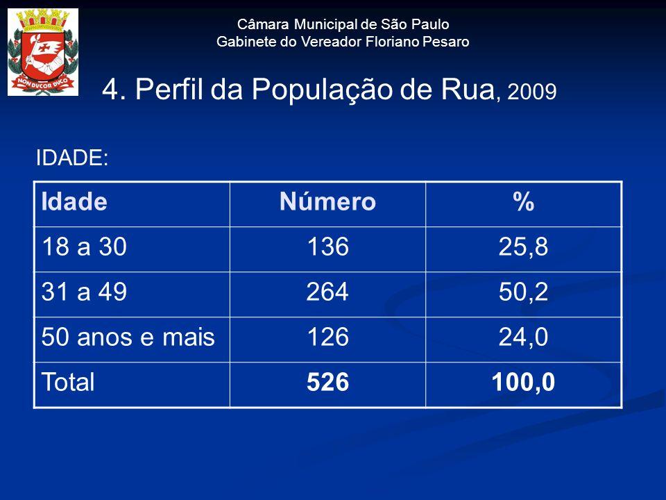 Câmara Municipal de São Paulo Gabinete do Vereador Floriano Pesaro 4. Perfil da População de Rua, 2009 IDADE: IdadeNúmero% 18 a 3013625,8 31 a 4926450