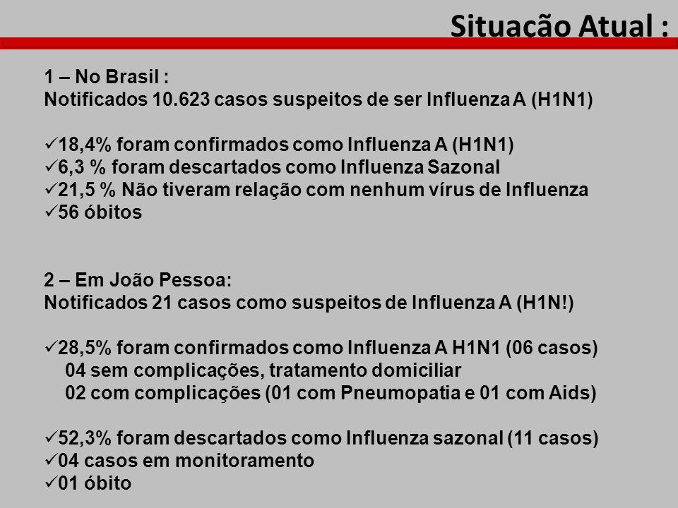 Situação Atual : 1 – No Brasil : Notificados 10.623 casos suspeitos de ser Influenza A (H1N1) 18,4% foram confirmados como Influenza A (H1N1) 6,3 % fo