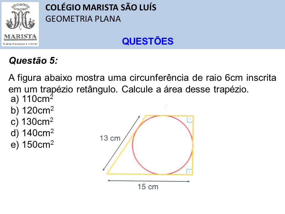 COLÉGIO MARISTA SÃO LUÍS GEOMETRIA PLANA QUESTÕES Questão 5: A figura abaixo mostra uma circunferência de raio 6cm inscrita em um trapézio retângulo.