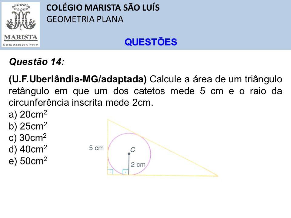 COLÉGIO MARISTA SÃO LUÍS GEOMETRIA PLANA QUESTÕES Questão 14: (U.F.Uberlândia-MG/adaptada) Calcule a área de um triângulo retângulo em que um dos cate