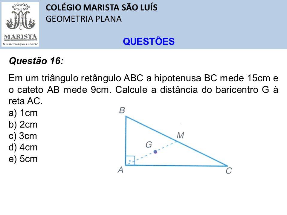 COLÉGIO MARISTA SÃO LUÍS GEOMETRIA PLANA QUESTÕES Questão 16: Em um triângulo retângulo ABC a hipotenusa BC mede 15cm e o cateto AB mede 9cm. Calcule