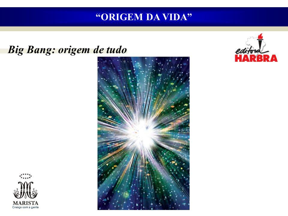 ORIGEM DA VIDA Big Bang: origem de tudo Cresça com a gente