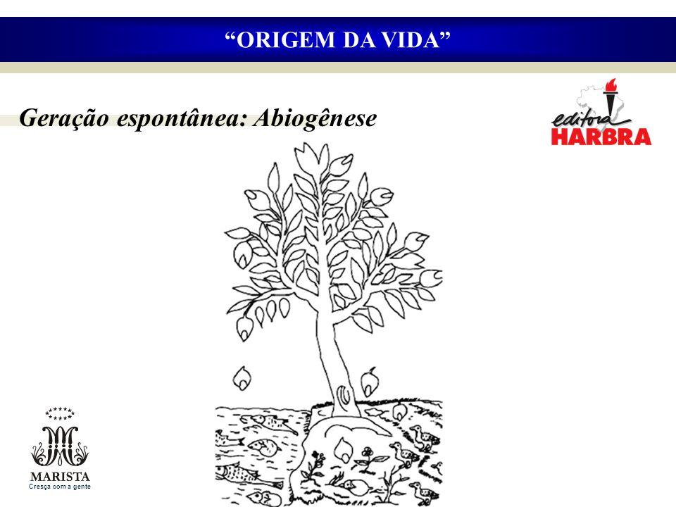 Geração espontânea: Abiogênese ORIGEM DA VIDA Cresça com a gente
