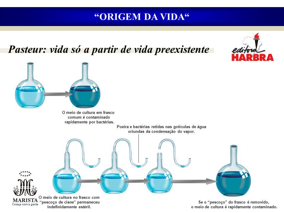 Pasteur: vida só a partir de vida preexistente ORIGEM DA VIDA Se o pescoço do frasco é removido, o meio de cultura é rapidamente contaminado. O meio d