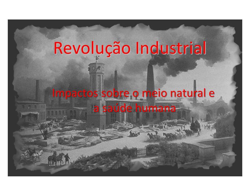 Crescimento econômico desordenado foi acompanhado de um processo jamais visto pela humanidade em que se utilizavam grandes quantidades de energia e de recursos naturais configurando um quadro de destruição contínua do meio ambiente