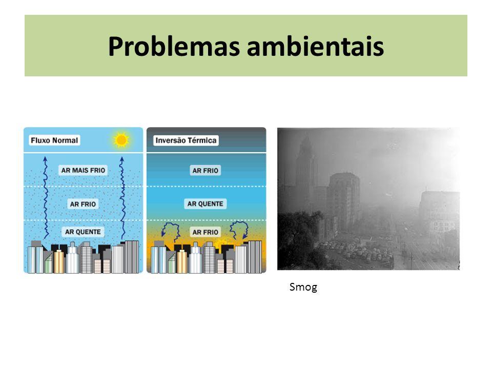 Problemas ambientais Smog