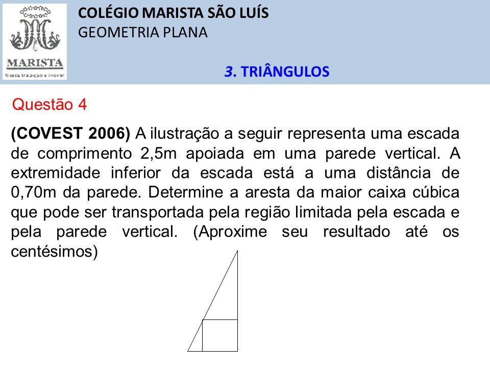 COLÉGIO MARISTA SÃO LUÍS GEOMETRIA PLANA 3. TRIÂNGULOS Questão 4 (COVEST 2006) A ilustração a seguir representa uma escada de comprimento 2,5m apoiada